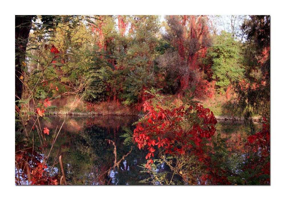 sul fiume in ottobre..