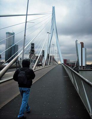 sul ponte di Rotterdam