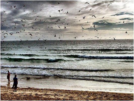 Sulla battigia aspettando la tempesta