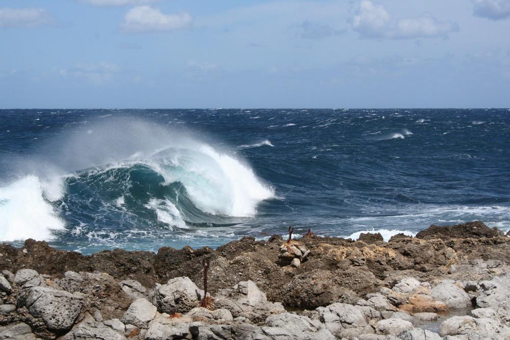 sulla cresta dell' onda...