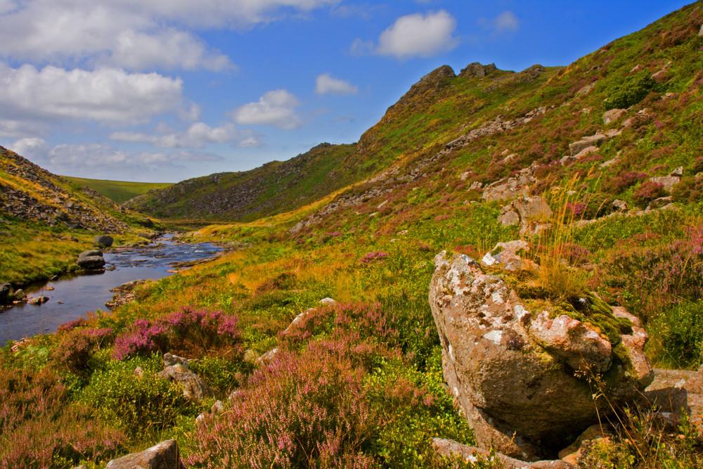 Summer at Dartmoor