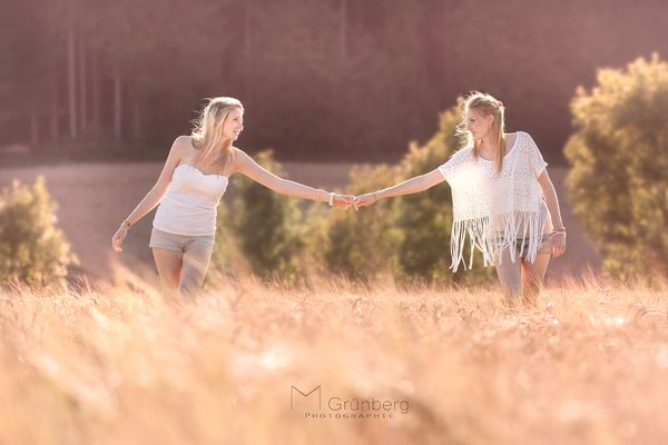 Summer in a cornfield