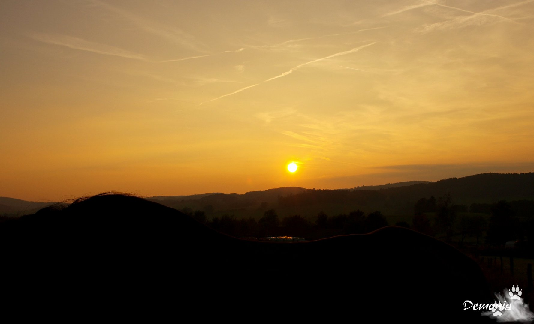 Sun Down....