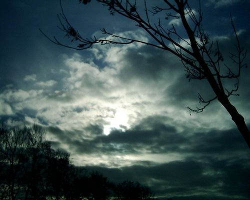 Sun in the Dark