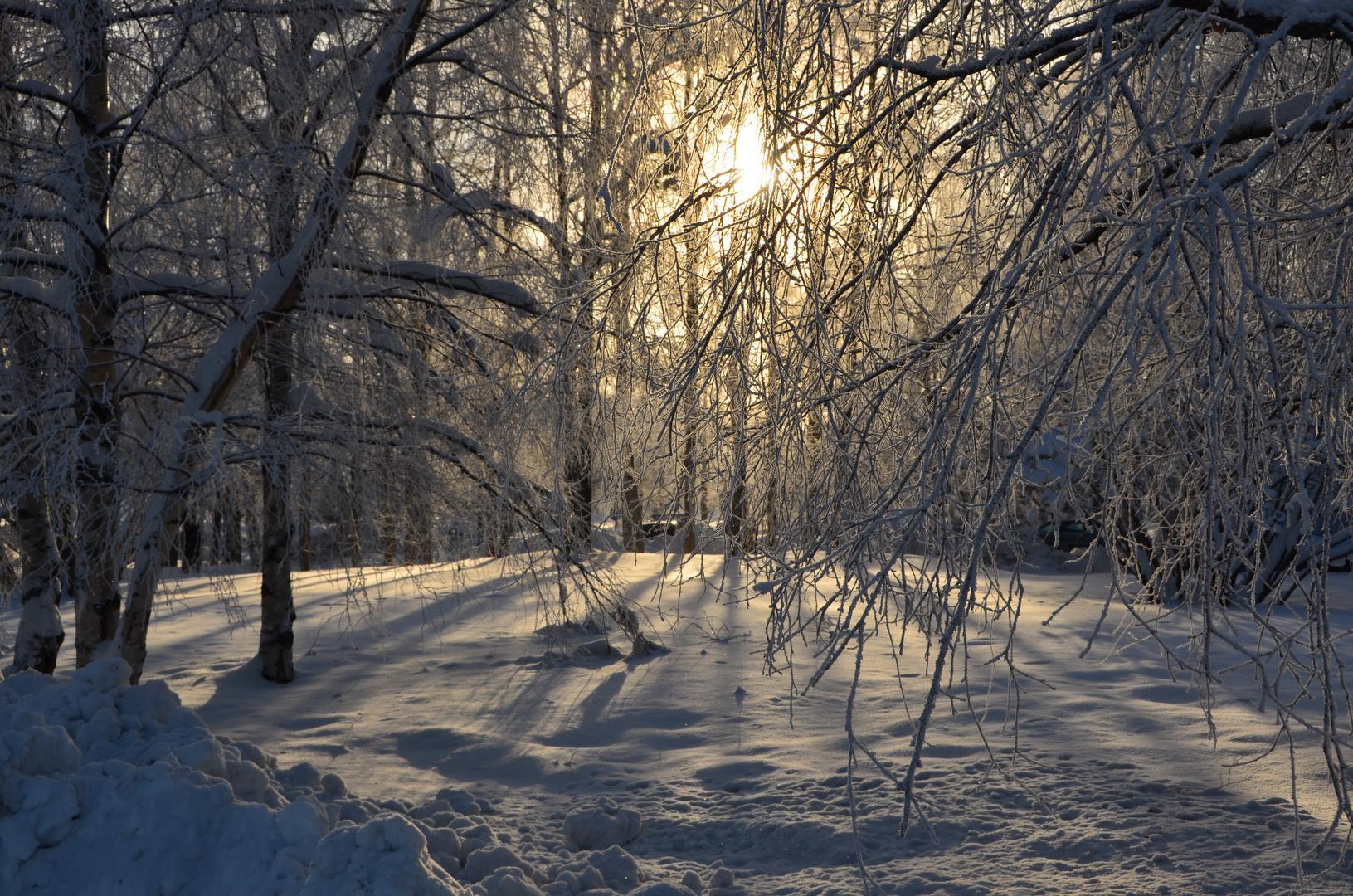 sun over Lapland