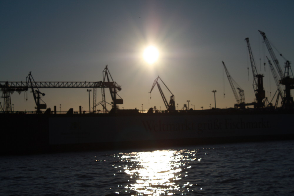Sun over the Harbor of Hamburg!