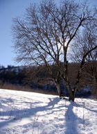Sun.. Snow.. Shadow