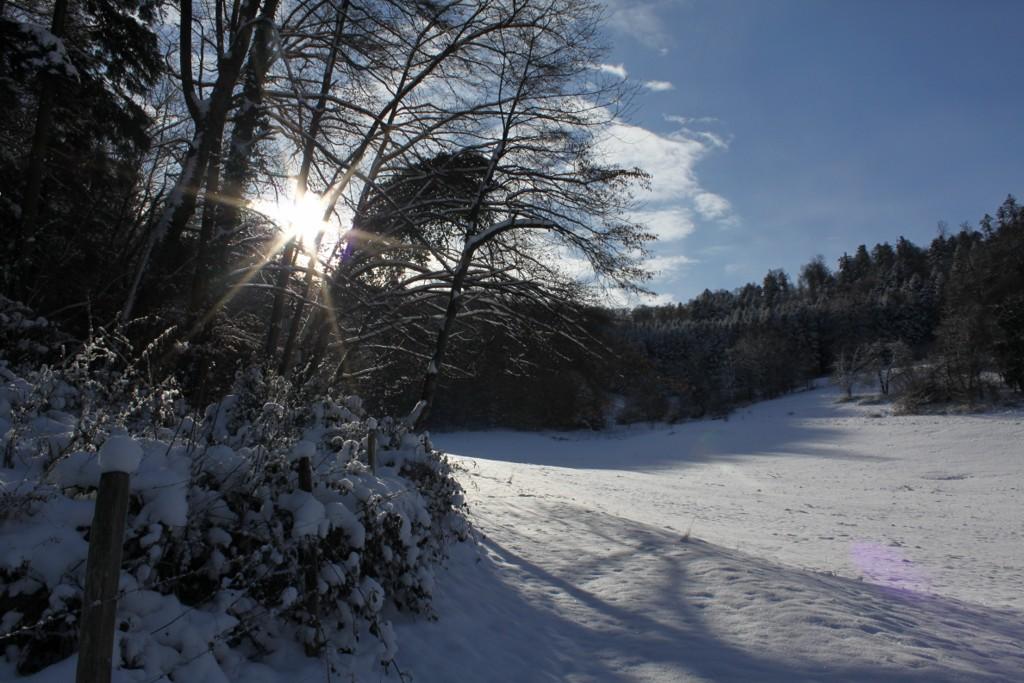 Sundgau sous la neige (3)