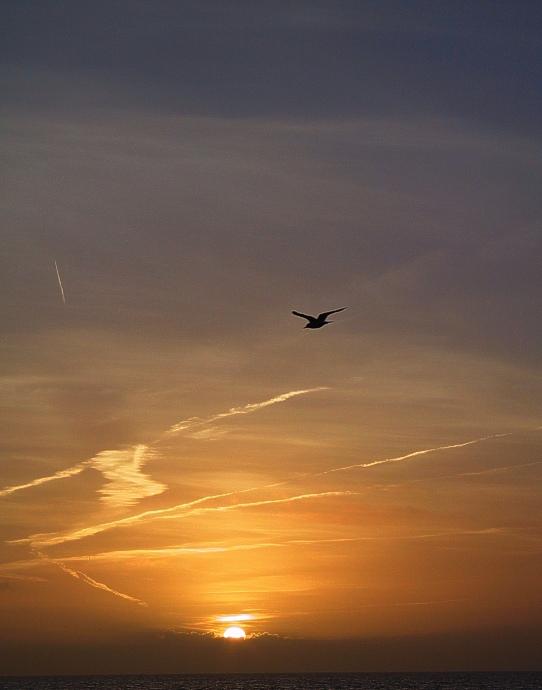 """Sundown auf """"nordfriesich"""" (3)"""