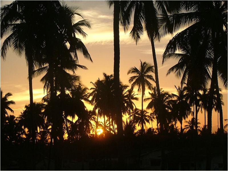 Sundowner auf Zanzibar