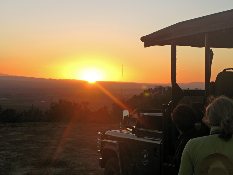 Sundowner im Addo Elefant Park in Süd Afrika