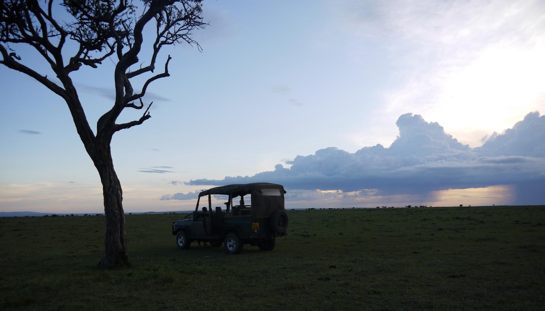 Sundowner in der Mara