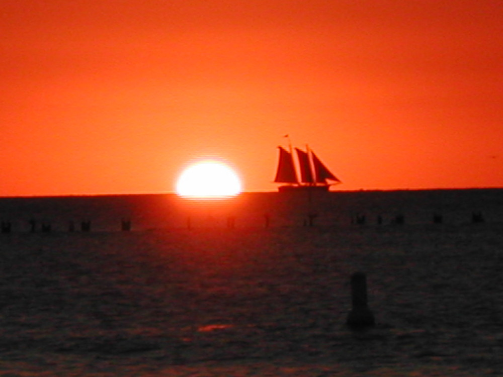 Sundowner in Key West I