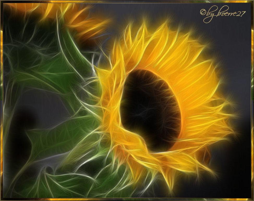 Sunflower - Spielerei 3