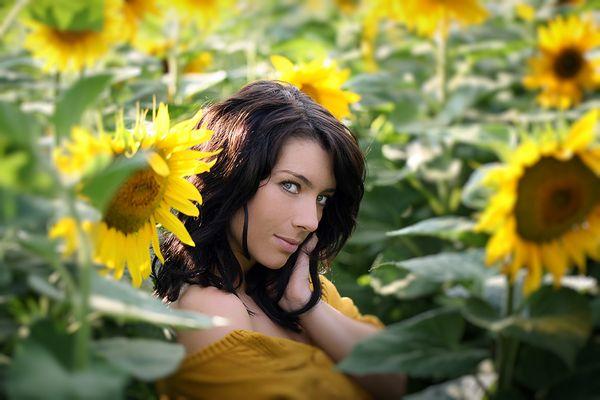 .sunflowertime.