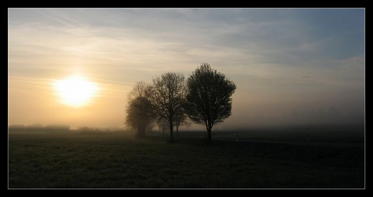 Sunlights in the Fog
