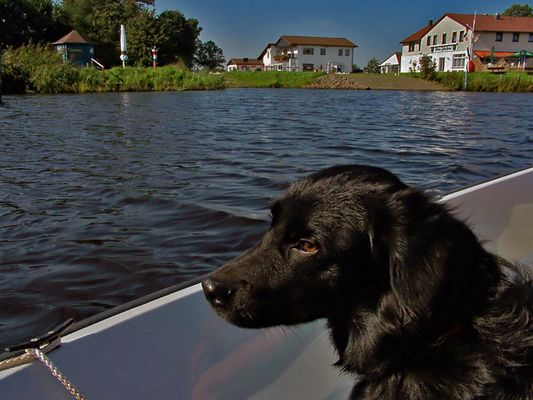 Sunny an Bord :-))