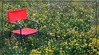 Sunny Chair...
