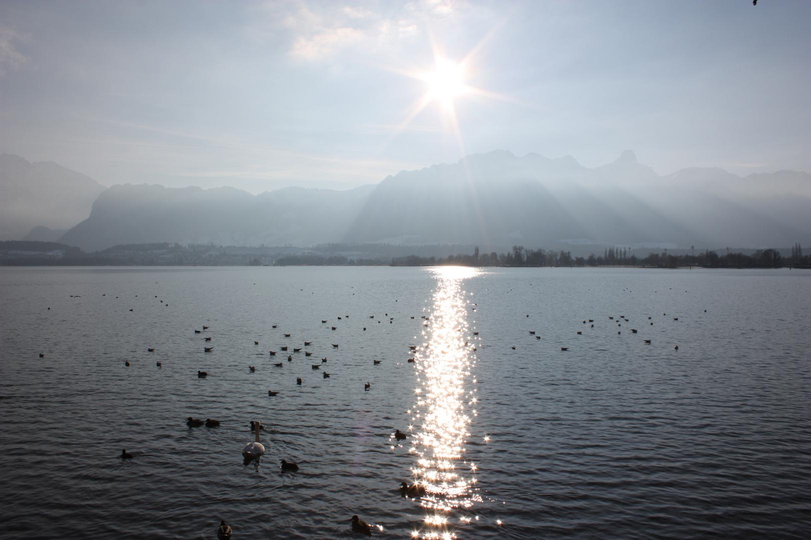 -sunny winter day-