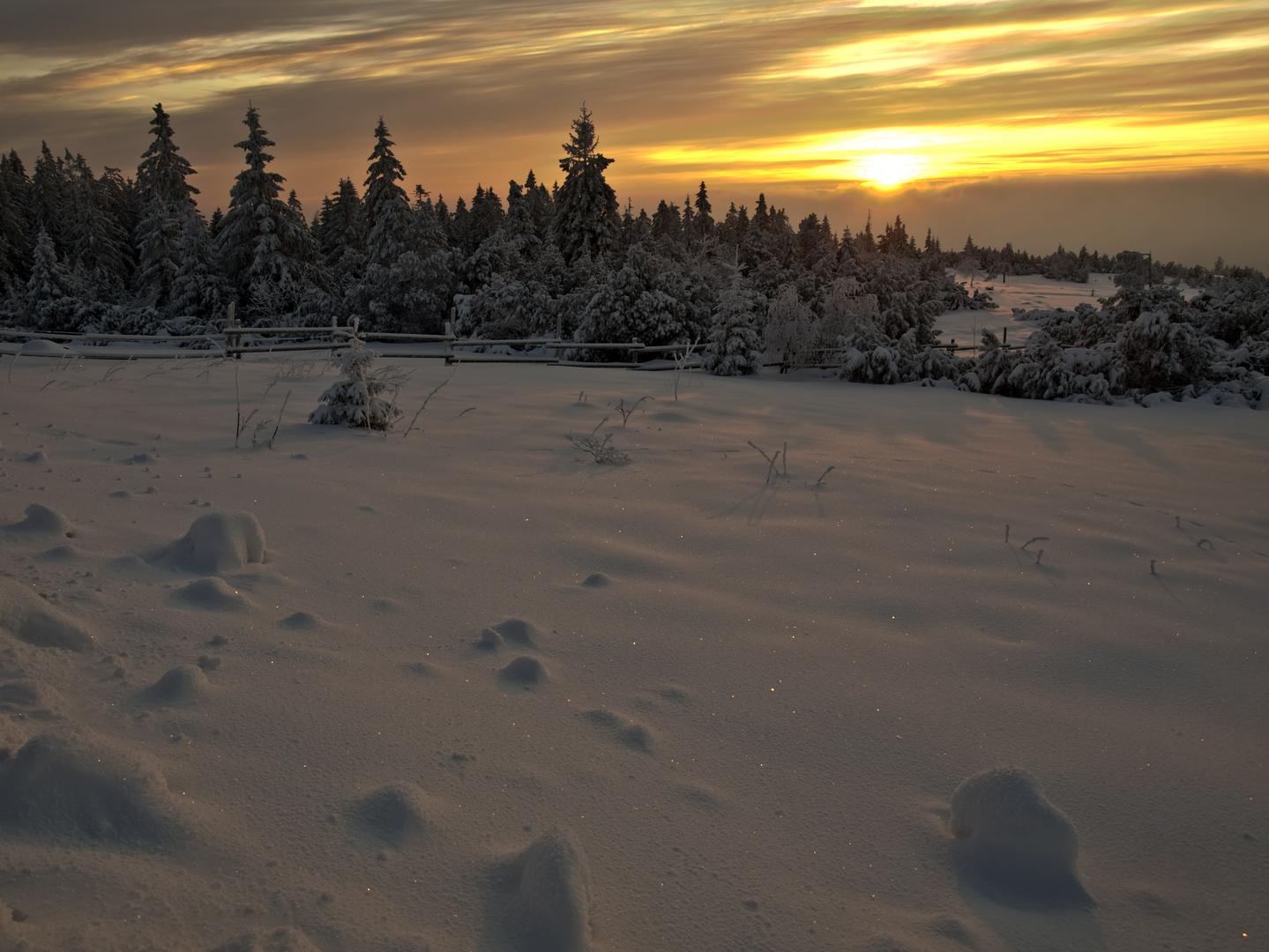 Sunny winter series II