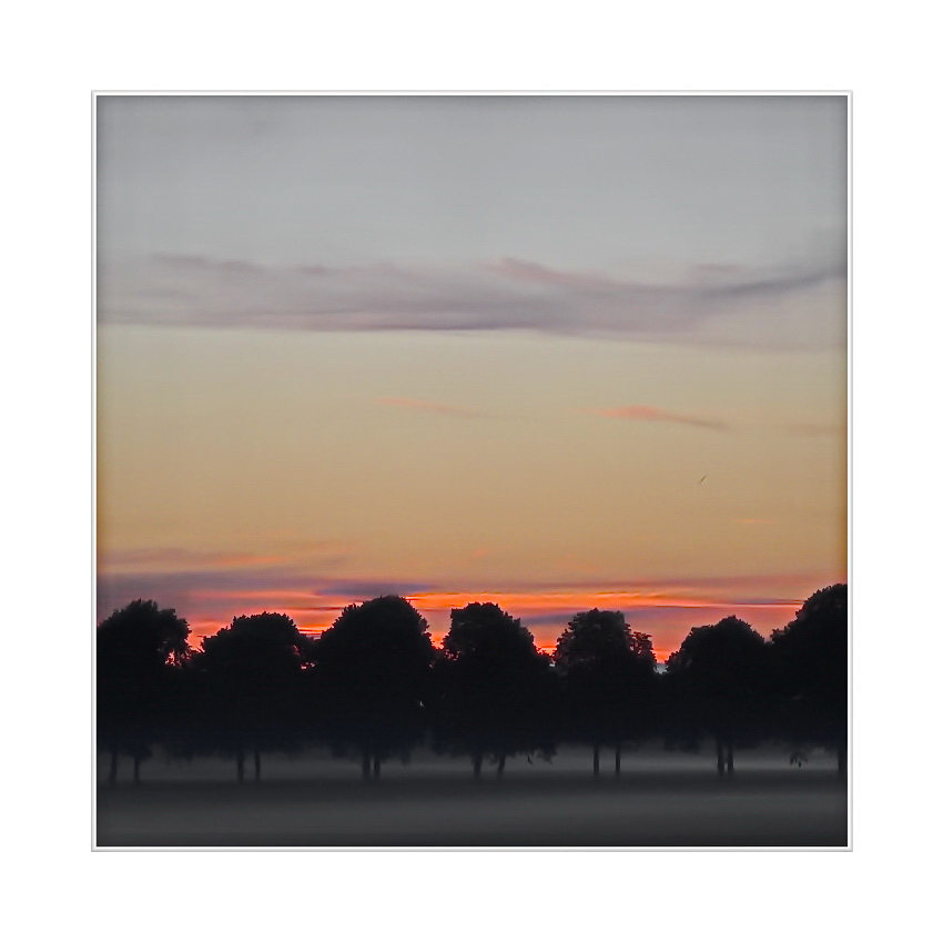 Sunrise 01.08, 2013 - 05:56