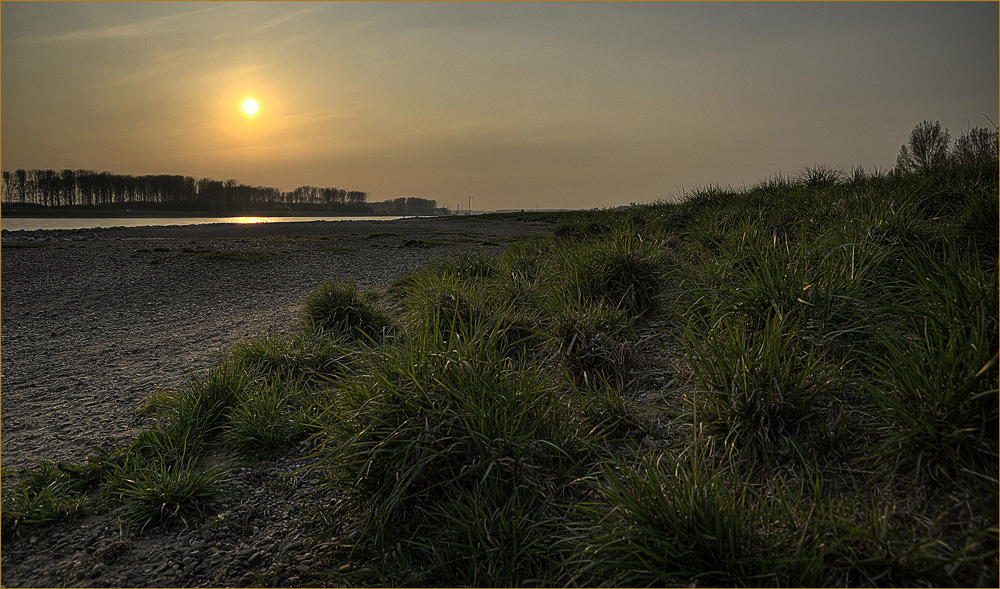 ~ Sunrise ~
