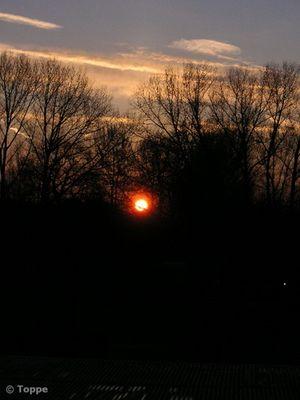 ::: Sunrise 1 :::