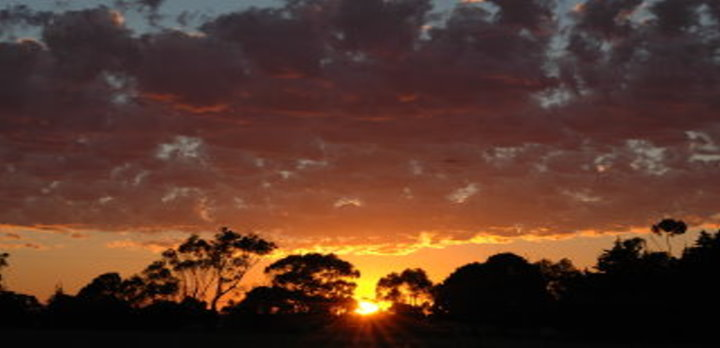 Sunrise # 1