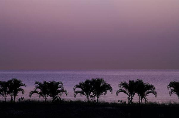 *** sunrise at miami beach ***