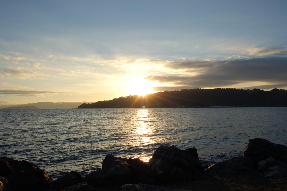 Sunrise Auckland