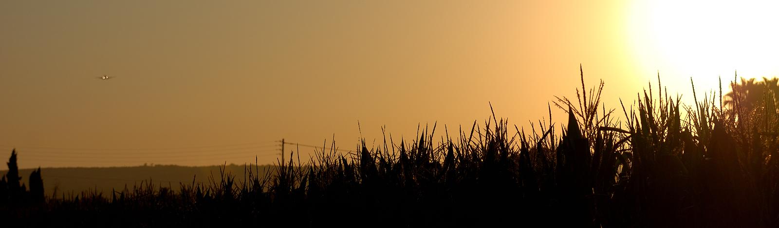 Sunrise auf Mallorca