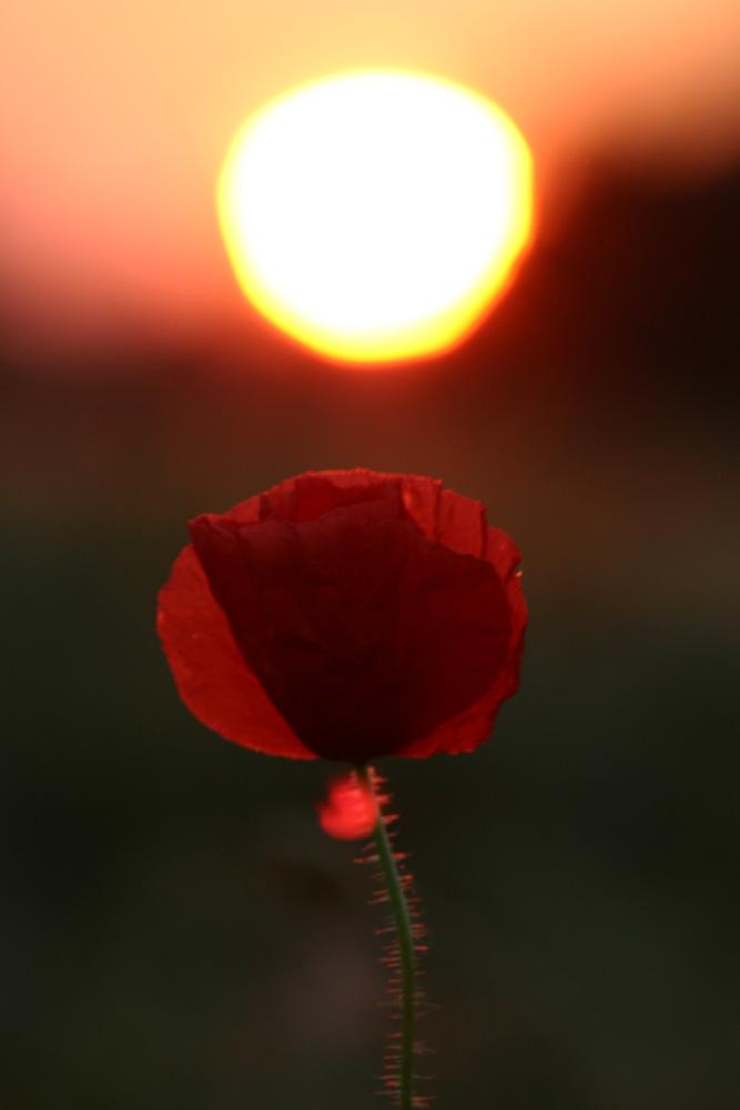 Sunrise einmal anders