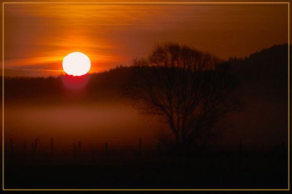 Sunrise im Wiesengrund