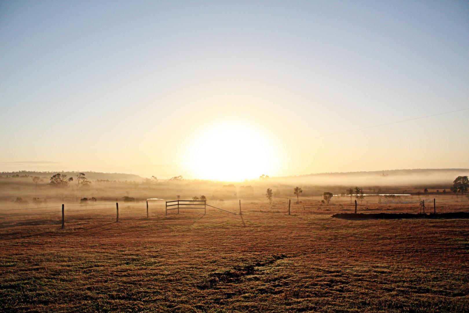 Sunrise On Pakington