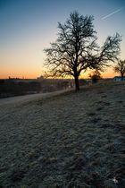 Sunrise over Bitburg(er)