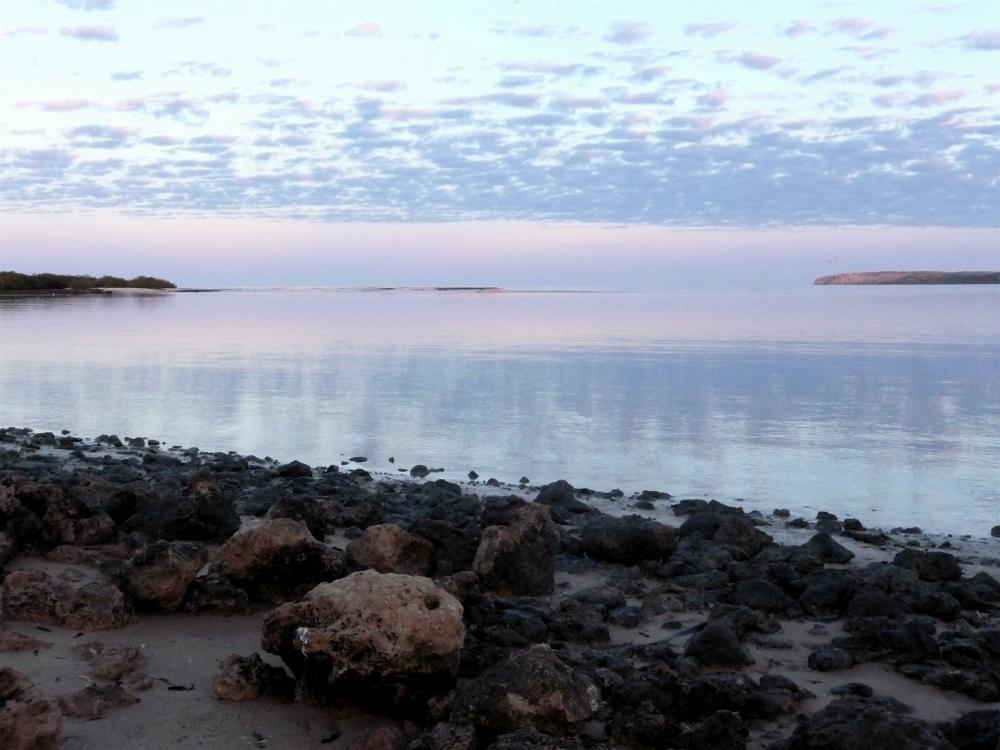 Sunrise over Shark Bay