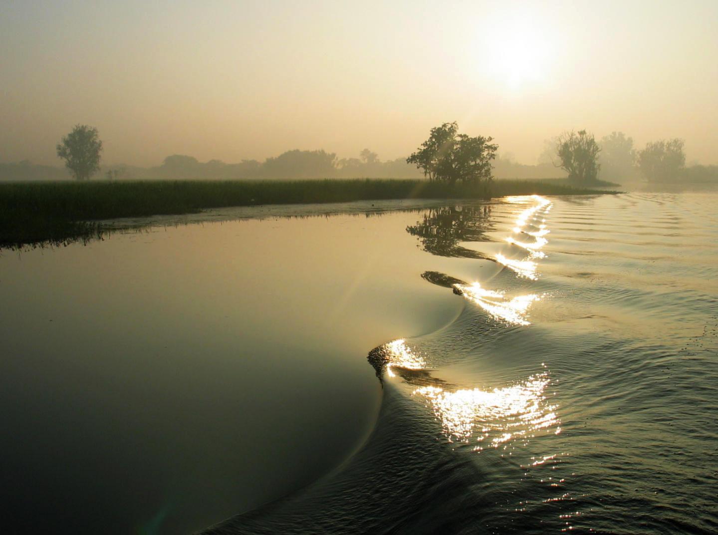 Sunrise Yellow Water