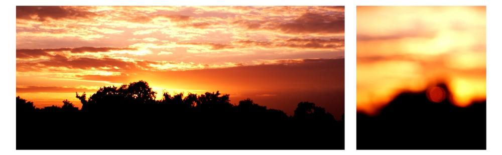 :: Sunset ::