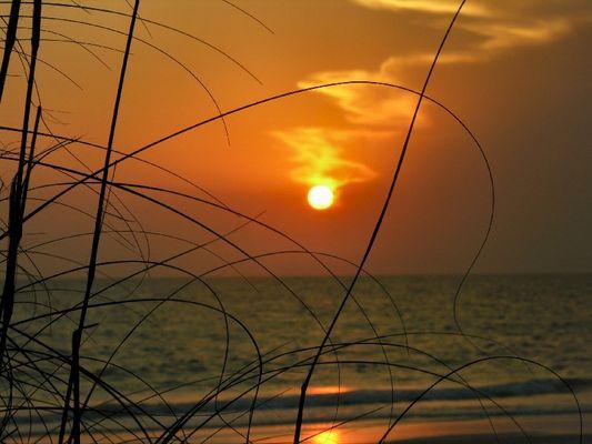 ++Sunset++