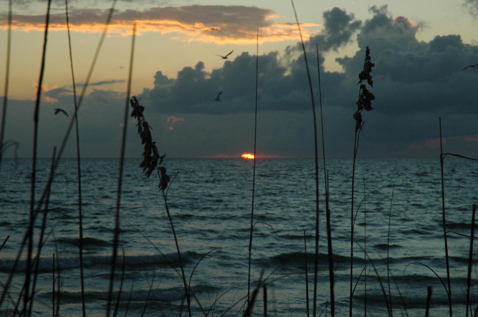 Sunset am Golf von Mexico