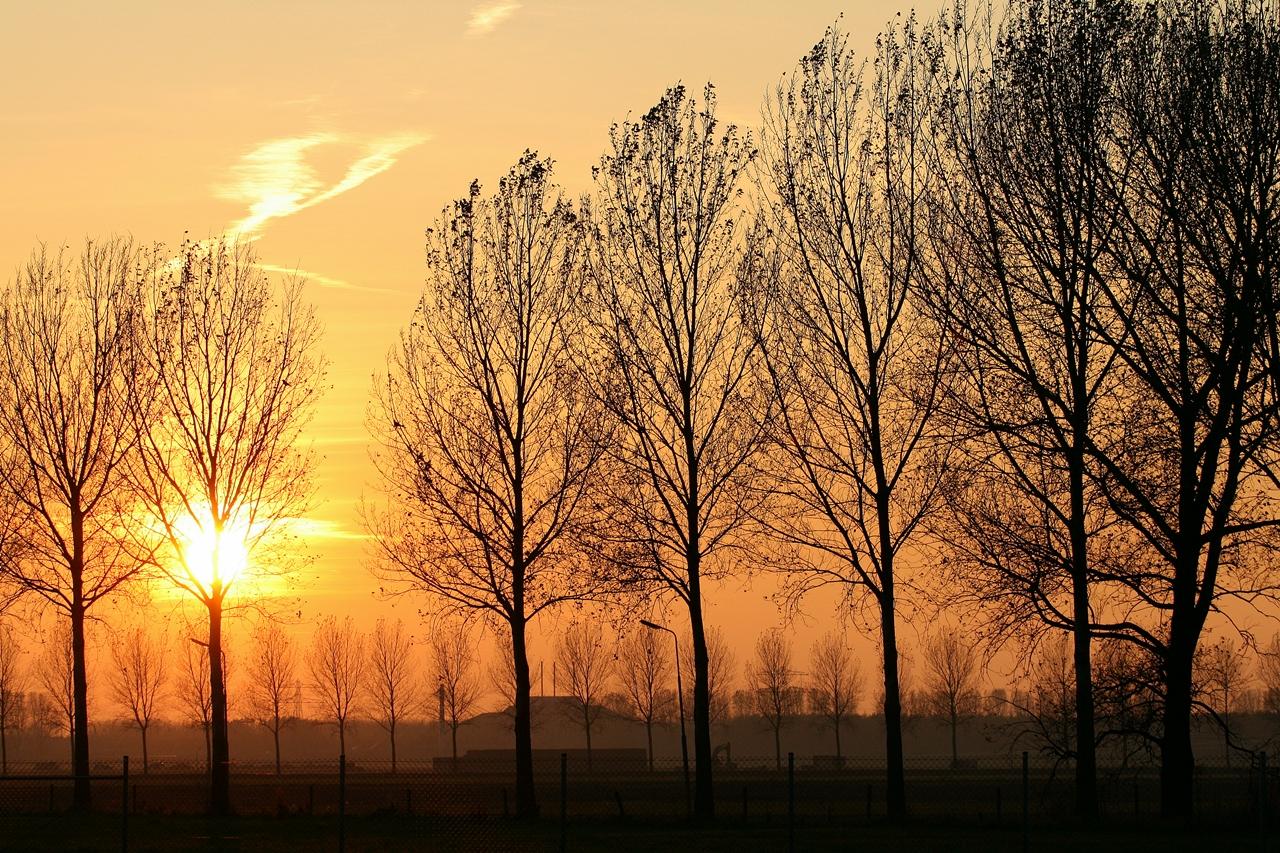 Sunset @ Amsterdam