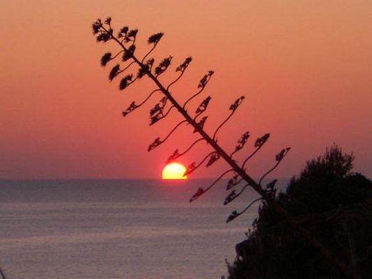 Sunset an der portugisischen Küste