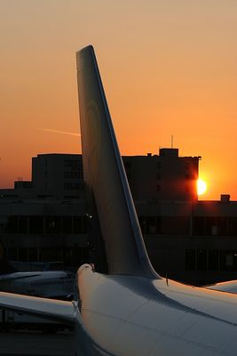 Sunset behind a wing