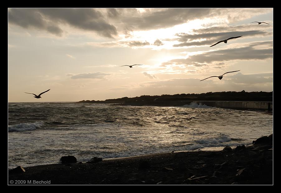 Sunset bei Newport