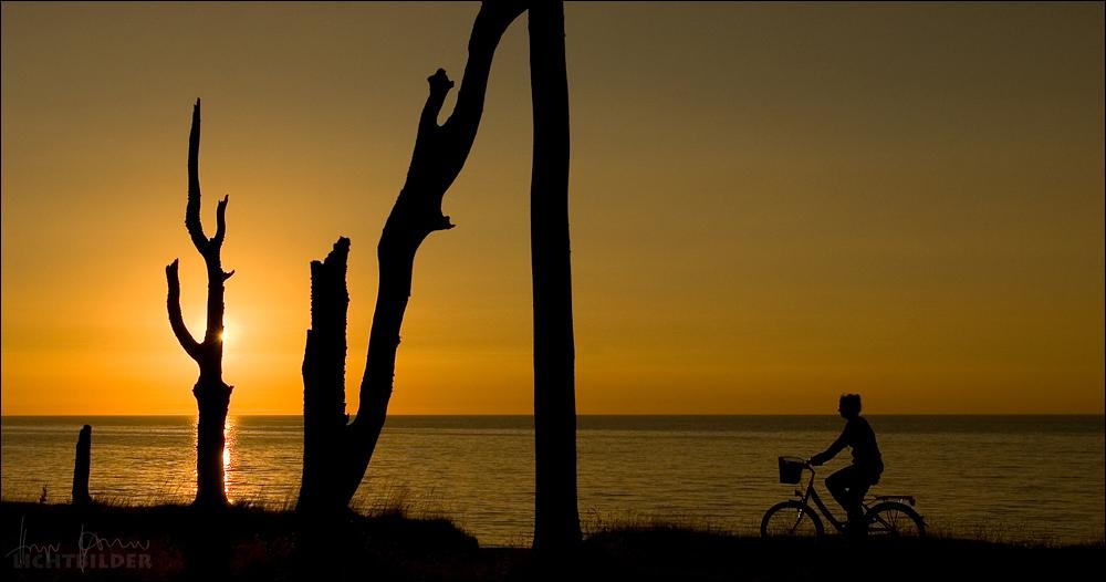 | sunset-biker |
