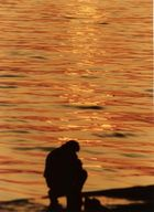 sunset cavities