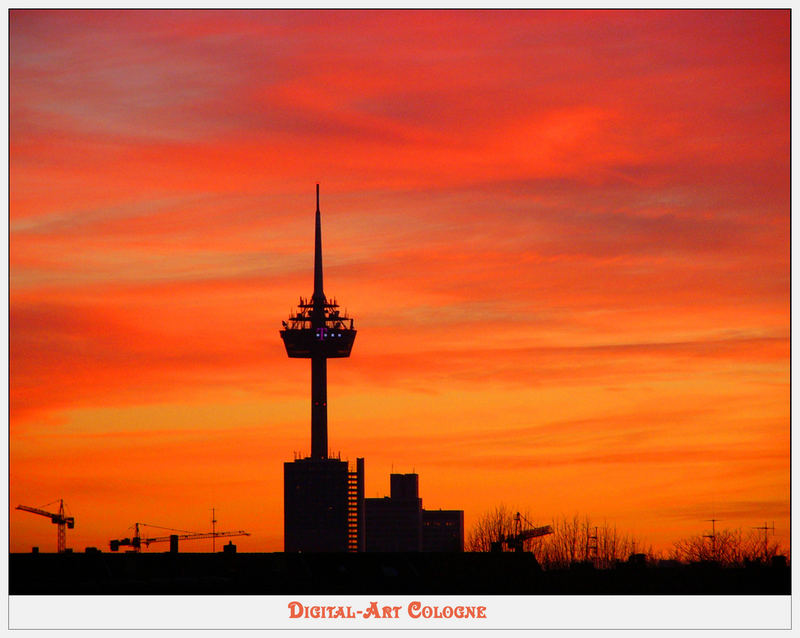 Sunset cologne