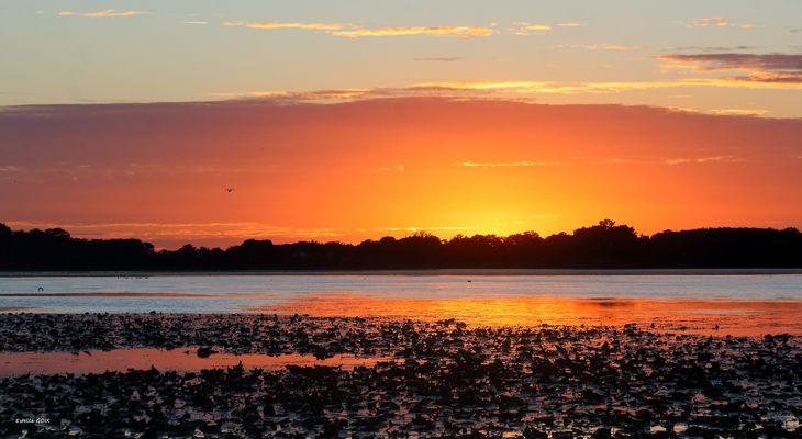 Sunset Creusois