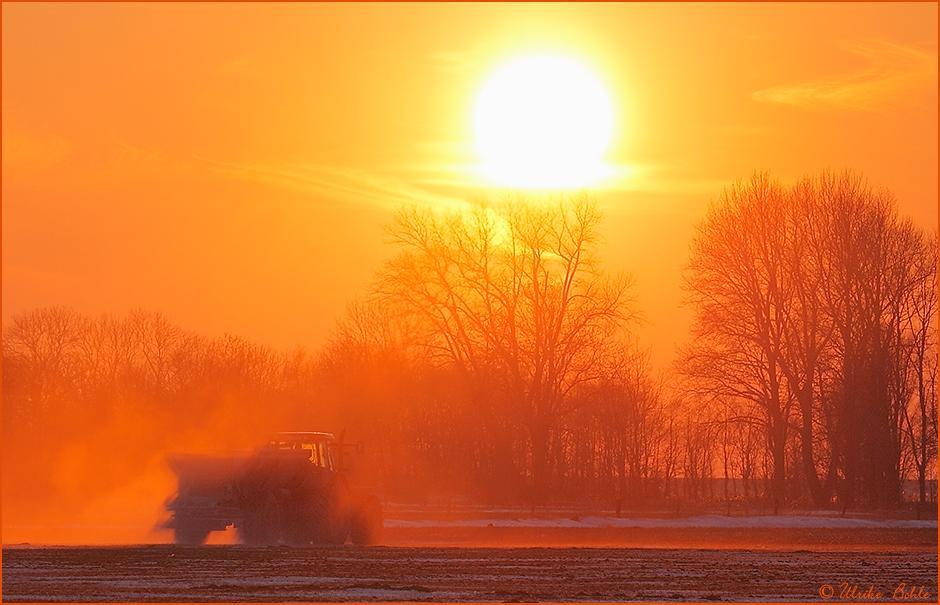 ~ Sunset-Farming ~