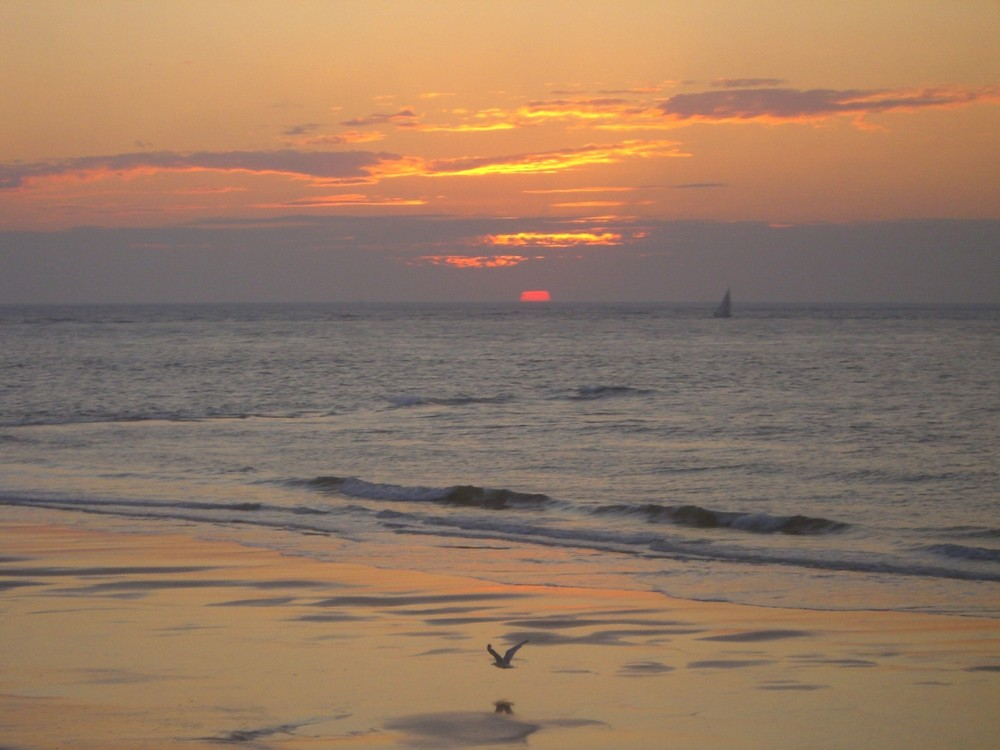 Sunset III 2006